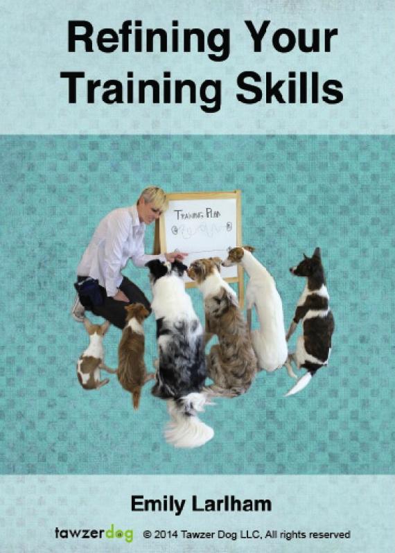 Refining Your Training Skills