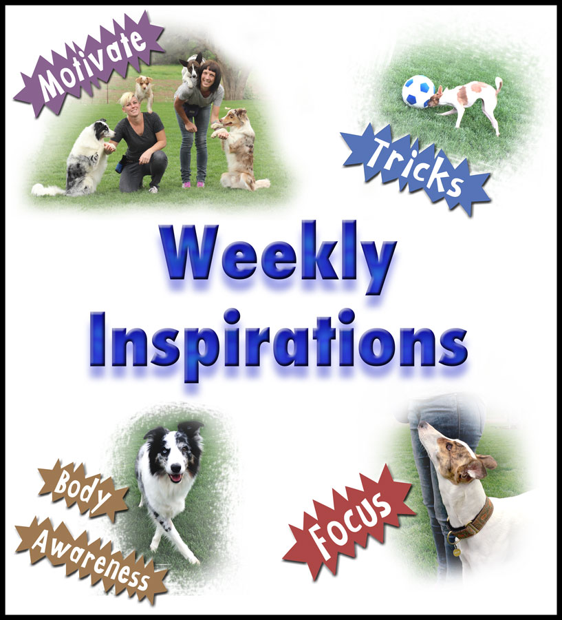 Weekly Inspirations Logo