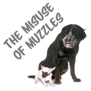 muzzle, muzzles, training a dog, dog training, clicker training, youtube dog training, youtube dog trainer, how to train a dog, fear, reactivity, aggression