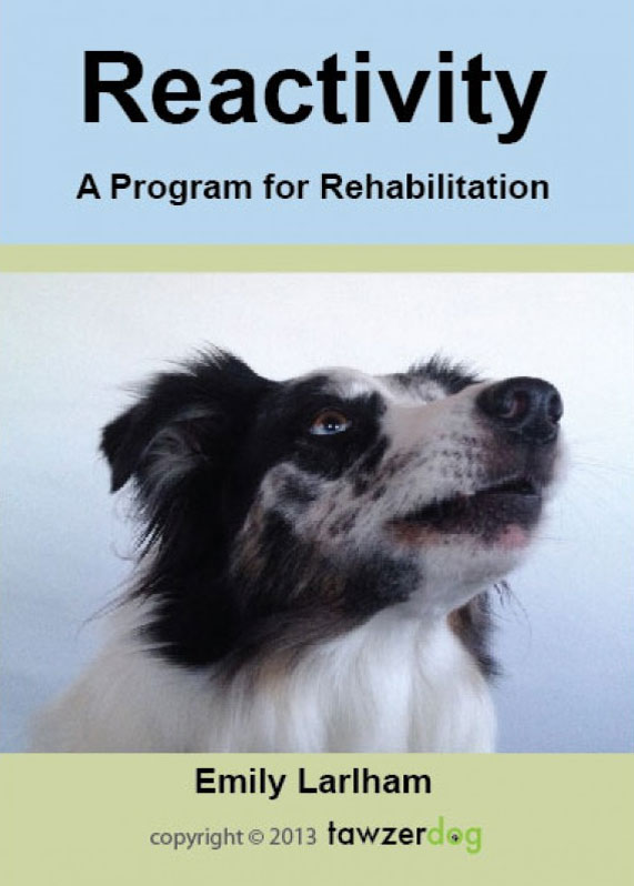 Reactivity A Program for Rehabilitation